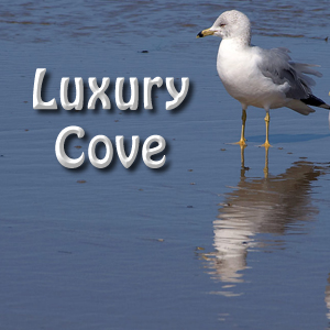 Luxury Cove
