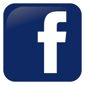 Facebook logo button that leads to the LeeFitzsimmons.com Facebook fanpage